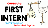 Intern Happenings….