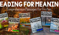 Reading for Meaning Preview