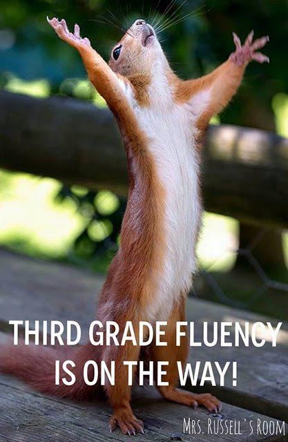 3rd Grade Fluency